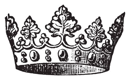 Crown was formed of four large and as many smaller leaves of a deeply serrated type, vintage line drawing or engraving illustration.