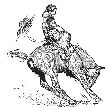 This image represents Bucking Bronco with a rider, vintage line drawing or engraving illustration. Illustration