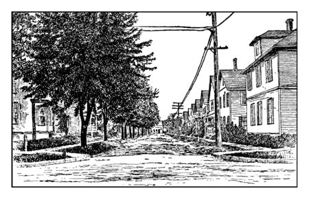 Trees on a City Street which is the effect of trees on a city street compared with no trees, vintage line drawing or engraving illustration.