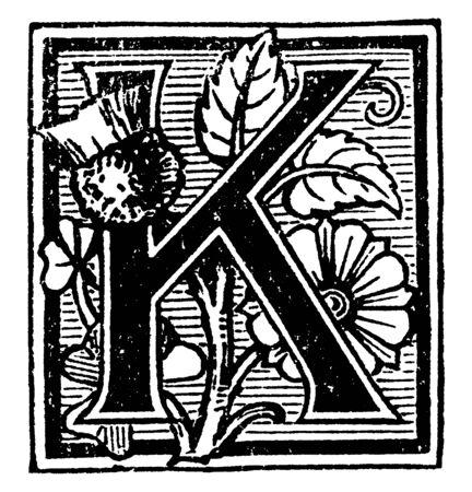 A decorative capital letter K with flowers and lines, vintage line drawing or engraving illustration Ilustração