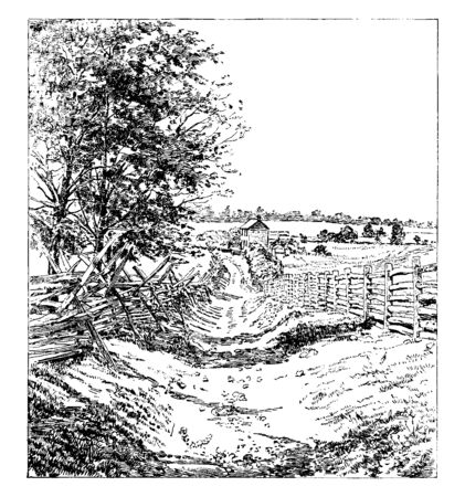 Sunken Road at Battle of Antietam also known as the Battle of Sharpsburg was fought on September 17 in 1862, vintage line drawing or engraving illustration.