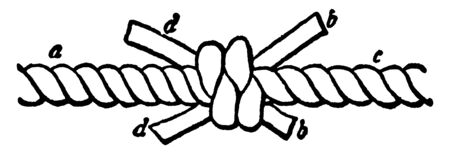 Shroud Knot is a multi strand bend knot used to join two ends of laid rope together, vintage line drawing or engraving illustration. Ilustração