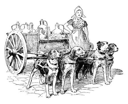 Dogs Pulling Wagon full of jugs for a Dutch girl, vintage line drawing or engraving illustration.