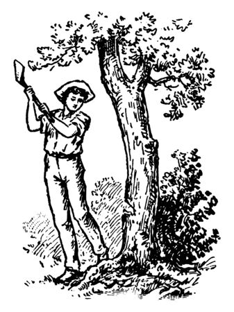 A man cutting tree with axe, vintage line drawing or engraving illustration