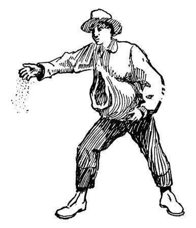 A man spreading seed, vintage line drawing or engraving illustration