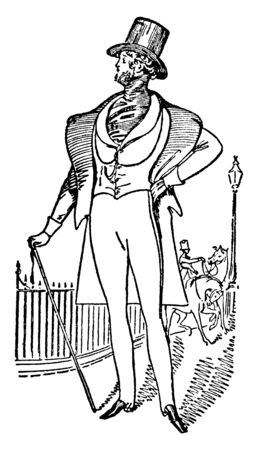 An illustration of Count DOrsay, a title in the peerage of France, vintage line drawing or engraving illustration