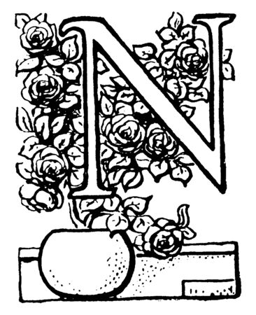 A capital letter N with potted plant, vintage line drawing or engraving illustration