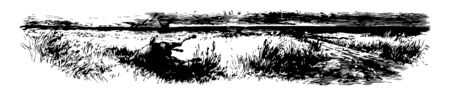 Hundred Mile Prairie showing image of the dead horse, the vultures, and large ground vintage line drawing. 版權商用圖片 - 132939198