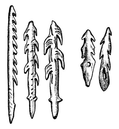 This image shows the five different reindeer horns. All the horns have different shapes. These are made during the reindeers age, vintage line drawing or engraving illustration. Illusztráció