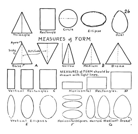 Labeled forms that show various measures of form, vintage line drawing or engraving illustration. Illusztráció