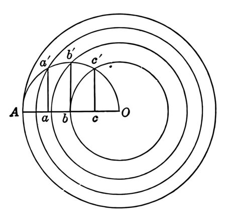 A diagram of a circle divided equally by concentric circles, vintage line drawing or engraving illustration. Çizim