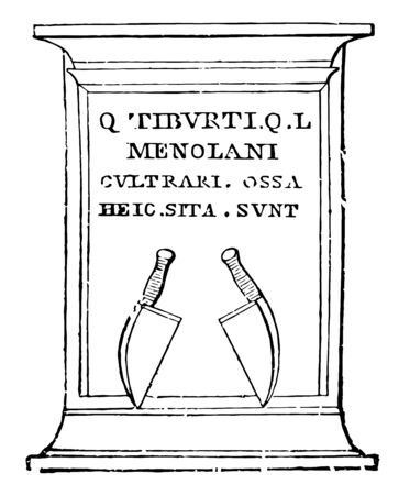 The Tombstone of cultrarius designed with two clusters, vintage line drawing or engraving illustration.