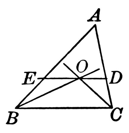 An image showing bisectors triangle with base angles. In this triangle two lines drawn from the base and a line drawn from the center, vintage line drawing or engraving illustration.