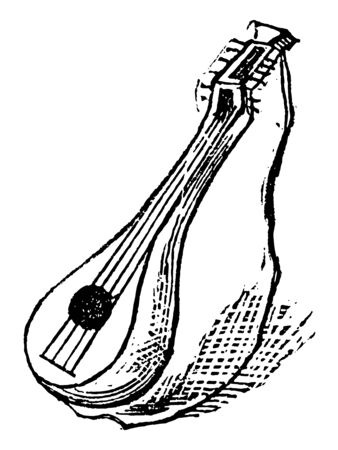 Lute is a stringed instrument formerly much in use, vintage line drawing or engraving illustration.