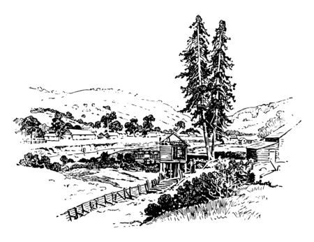 Sutter fort an state historic agricultural and trade colony of 19th century built by John Sutter vintage line drawing.