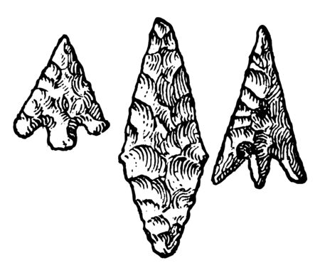 This image shows the 3 arrowheads. The average arrowhead is larger than the other arrowheads. These are implemented in the Neolithic age, vintage line drawing or engraving illustration.