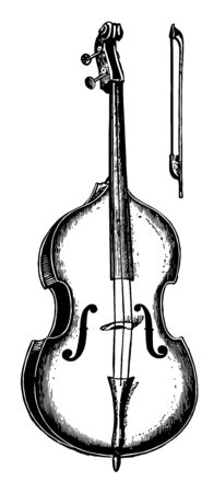 Double Bass is tuned in fourths and has the sloping shoulders and flat back characteristic of the viols, vintage line drawing or engraving illustration.