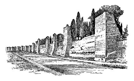 This image shows the wall of Rome. The wall of Rome is made using pillars. Behind the wall there are many trees, vintage line drawing or engraving illustration.