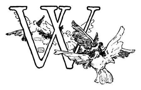 This picture includes the letter W. Letter having the double border. There are some birds across the letter, vintage line drawing or engraving illustration.