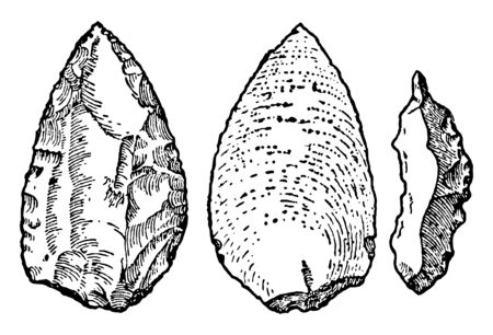 This image shows the different types of stones. Three images of early stone implemented during the Mousterian period, vintage line drawing or engraving illustration. Illusztráció