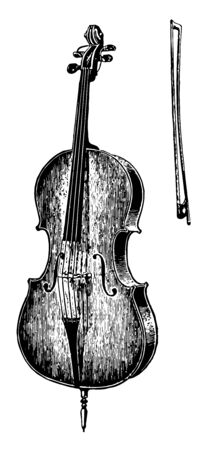 Violoncello is a bass viol of four strings, vintage line drawing or engraving illustration. Ilustrace
