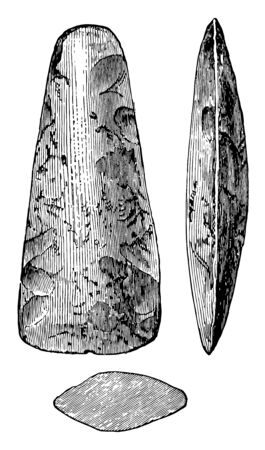 This image shows the polished stone Celts. 3 stones are shown in the image. Two stones are larger and one is smaller, vintage line drawing or engraving illustration.