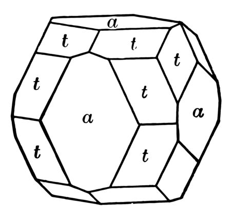 A diagram showing a combination of diploid and cube, vintage line drawing or engraving illustration.
