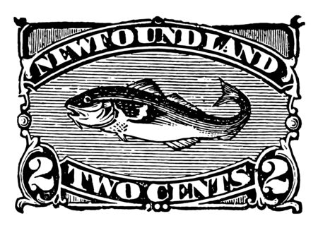 New foundland two cents stamp with salmon in the center vintage line drawing. Иллюстрация