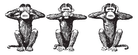 This illustration represents Three Wise Monkeys, vintage line drawing or engraving illustration. Çizim