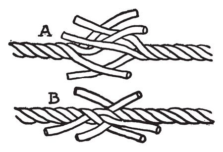 Short splice the ends of the ropes are unlaid for a short distance and brought together, vintage line drawing or engraving illustration.
