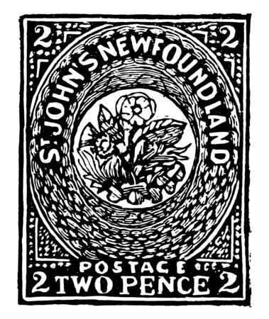 New foundland two pence stamp, 1857 is an oval circle and flower in center. St. Johns New foundland written on the oval circle vintage line drawing.