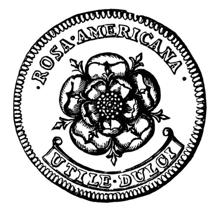 A picture is showing Copper Two Pence Coin, No Date. It shows the Reverse side of the coin and on this coin, the rose is shown with the surrounded inscription - ROSA AMERICANA and UTILE DULCI on beneath, vintage line drawing or engraving illustration.