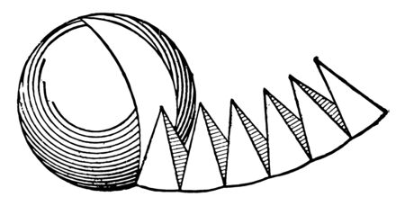 It has been shown that the pyramids cut from the sphere, which shows that a sphere (ball) is formed by concrete pyramids, vintage line drawing or engraving illustration.