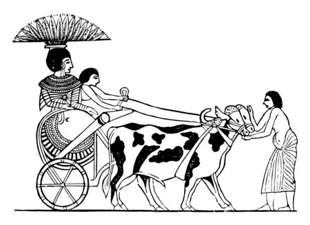 An Ethiopian princess riding a chariot, vintage line drawing or engraving illustration.