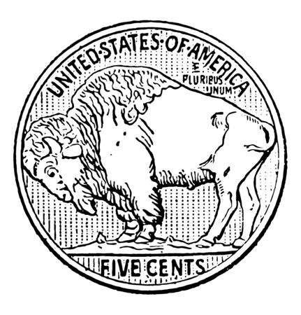 This is the Buffalo Nickel coins. Reverse side of American five cent piece with buffalo, vintage line drawing or engraving illustration. 向量圖像