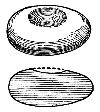 This image shows the pebble cup mortar. It is manufactured during the age of the reindeer. The structure of the mortar is like an ellipse, vintage line drawing or engraving illustration. Ilustração