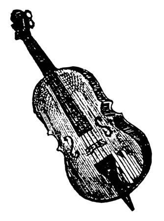 Bass violin used for playing the bass, vintage line drawing or engraving illustration. Ilustrace