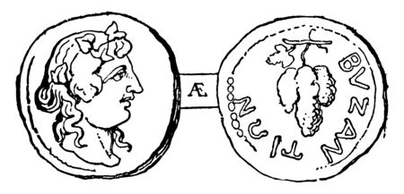 This image indicates the two coins. These 2 coins are connected to each other. Those coins are the Byzantine currency, vintage line drawing or engraving illustration.