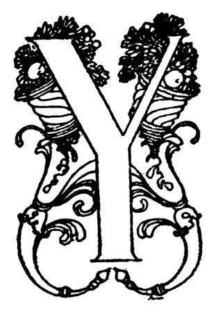 This picture shows the decorative letter Y. One side of the letter is broad but another side of letter is very narrow, vintage line drawing or engraving illustration. 일러스트