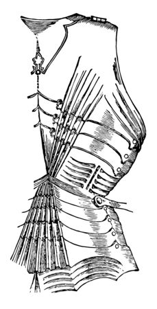 Fluted Dossire which in some cases added also to the utility of the piece as giving greater strength, vintage line drawing or engraving illustration. Фото со стока - 132970628