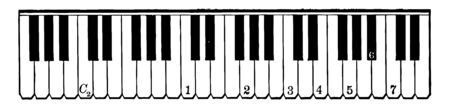 Keyboard which is a piano keyboard, vintage line drawing or engraving illustration. 向量圖像