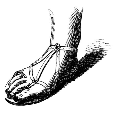This image shows the gladiator-style Roman sandal. This sole is made of the strap, vintage line drawing or engraving illustration.