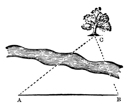 An image showing a triangle with a tree. Triangle used to refine the distance of an inaccessible object without measuring the elevation and climate in a horizontal plane or not, vintage line drawing or engraving illustration. 일러스트
