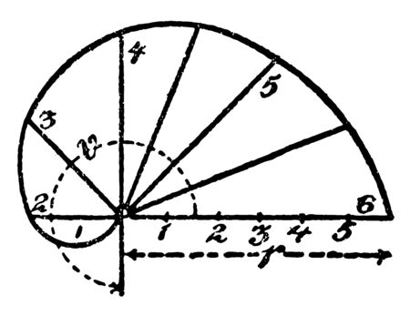 The image shows the construction of an arithmetic spiral. It has a curve along the x-axis and this curve is divided into six parts. In the x axis, 6 points are drawn, vintage line drawing or engraving illustration. Illusztráció