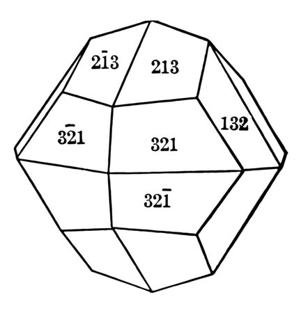 The diploid is a rare form found only in this class. It consists of twenty-four faces that correspond to half of the faces of a hexoctahedron, vintage line drawing or engraving illustration.