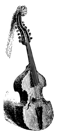 Viola D Amore is a curious and interesting instrument, vintage line drawing or engraving illustration.