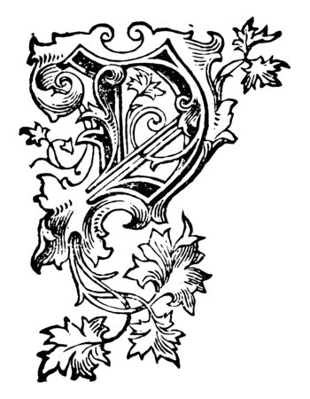 Decorative Floral V used at the start of a new chapter or heading, vintage line drawing or engraving illustration.