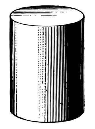 The image shows the cylinder. It is one of the most basic curvilinear geometric shapes and the ends are equal parallel circles, vintage line drawing or engraving illustration.