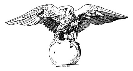 Akroter Eagle is shown at the Flora Pavillion in the Louvre in Paris, vintage line drawing or engraving illustration.