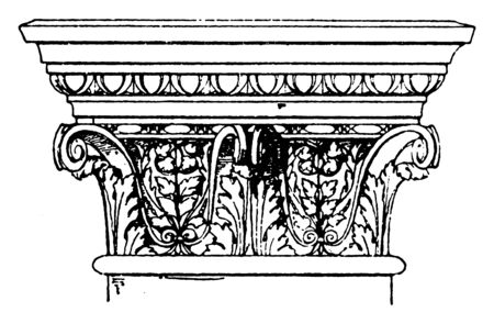 Corinthian Pilaster Capital, bucrania, swag, rosette, cornice, modillions, vintage line drawing or engraving illustration. Illusztráció